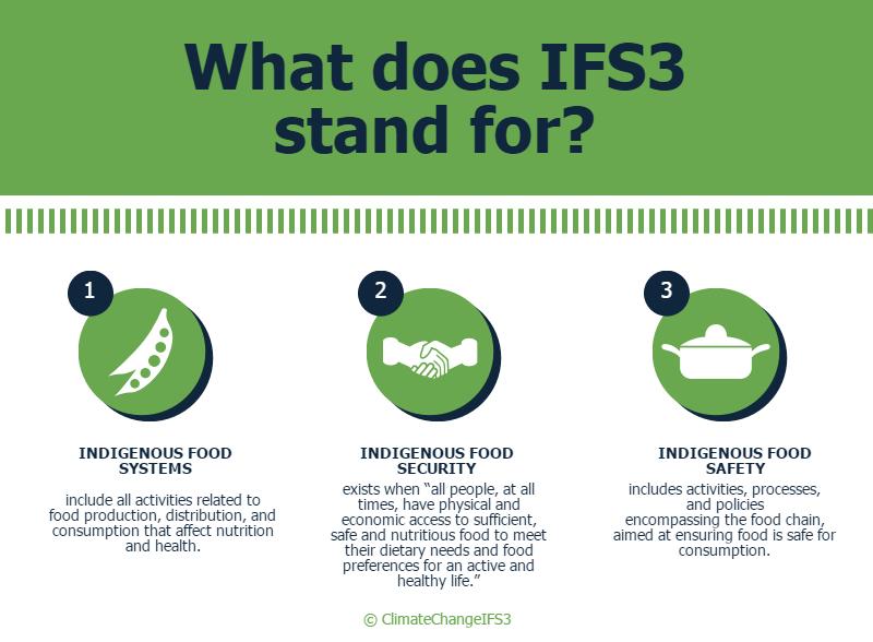 ifs3-infographic